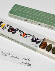 caja de bombones de autor con Fernando Álamo